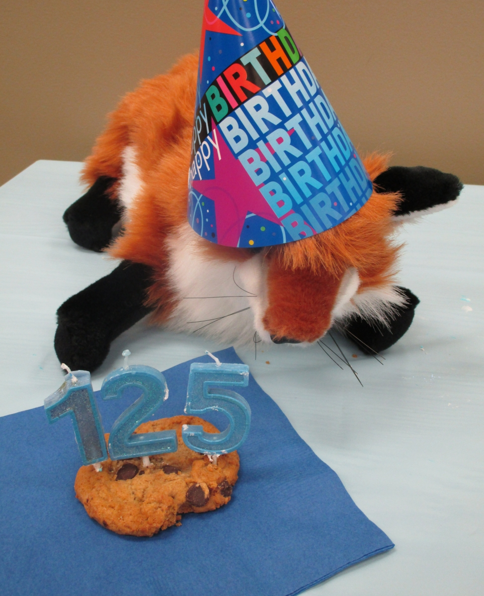 Birthday Activities Hpl