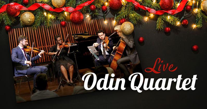 Muscial Quartet in concert