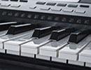An electronic keyboard