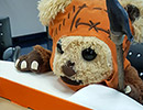 A teddy bear dressed like a Star Wars Ewok