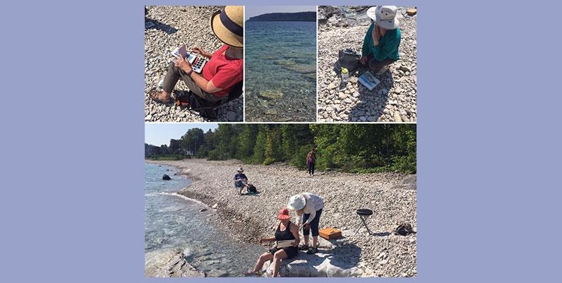 collage of photos on a beach