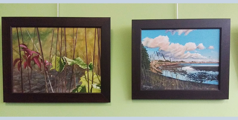 two framed painting of nature