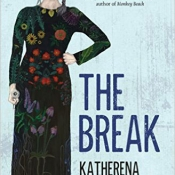cover of The Break