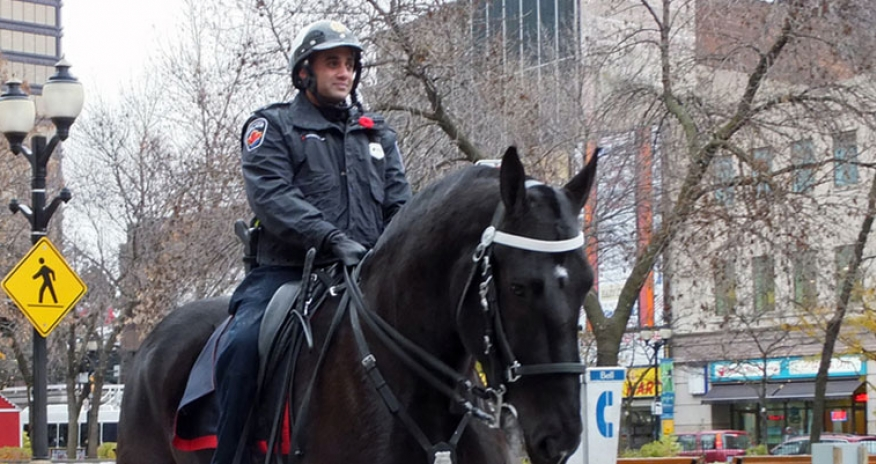 photo of mounted police in Hamilton