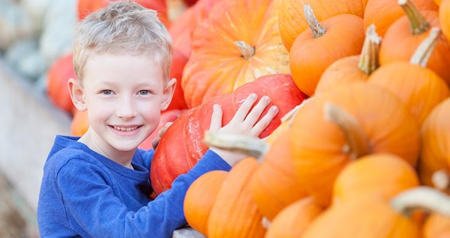a boy with pumpkins